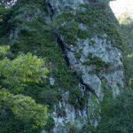 向かいの岩