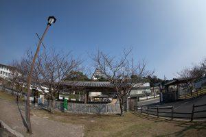 駐車場から見た唐津城