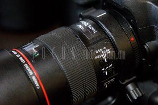 【機材レビュー】EF100mm F2.8L マクロ IS USM