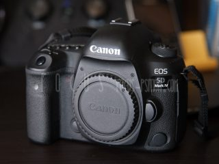どのカメラにしようかな