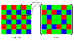 X-Trtansの配列